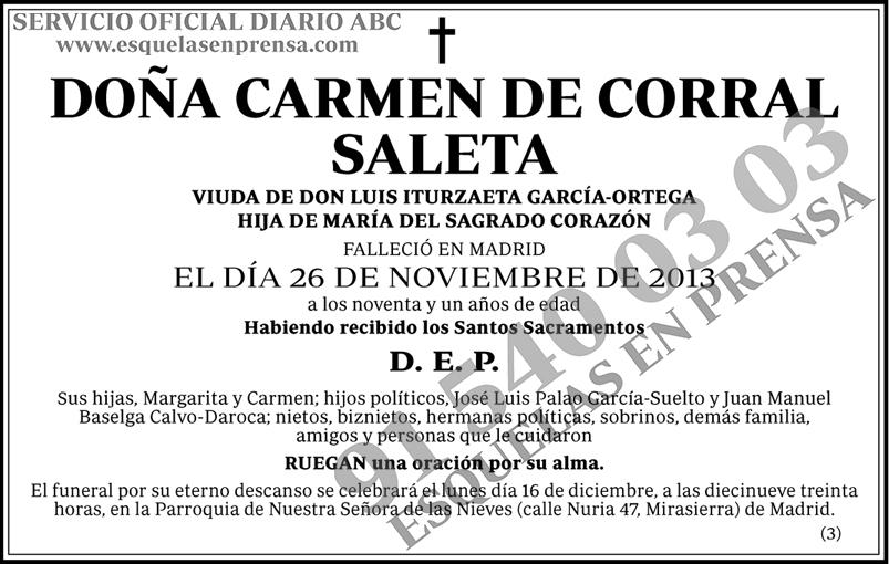 Carmen de Corral Saleta